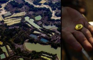 Marques Casara: A corrida do ouro e o risco de genocídio contra os yanomami
