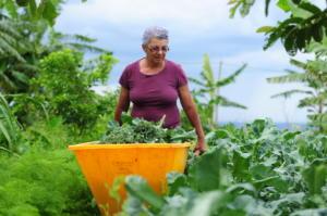 Programa Bem Viver fala sobre o PL emergencial da agricultura familiar
