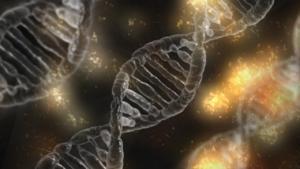 Avanço da ciência no combate ao coronavírus é destaque do Programa Bem Viver