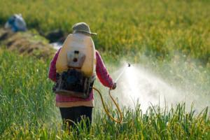 Programa Bem Viver ressalta proibição do glifosato e do milho transgênico no México