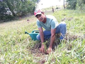 Plantar 100 milhões de árvores: confira a campanha do MST no programa Bem Viver