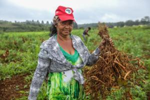 Patrimônios: confira a importância das sementes crioulas no programa Bem Viver