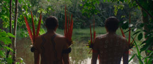 Programa Bem Viver: 'Diversidade da Amazônia só existe devido aos povos da floresta'