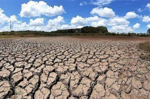 Marques Casara: Mudanças climáticas: sedução e morte na sociedade de consumo